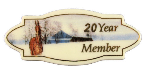 20 Year Anniversary Pin
